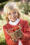 ogrodowej dziewczyny target520_0_ pomidory młodzi zdjęcie royalty free