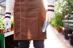 Ogrodowi narzędzia dla przeszczepienie rośliien holded rękami ogrodniczka Zdjęcie Royalty Free