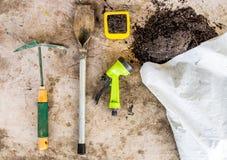 Ogrodowi narzędzia dla zasadzać na stole Obraz Royalty Free