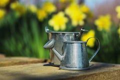 Ogrodowi narzędzia, podlewanie puszka i kwiaty na zieleni, uprawiają ogródek backgroun Zdjęcie Stock
