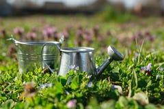Ogrodowi narzędzia, podlewanie puszka i kwiaty na zieleni, uprawiają ogródek backgroun Obrazy Royalty Free