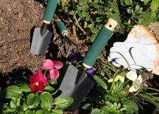 Ogrodowi narzędzia i kwiaty Obraz Royalty Free