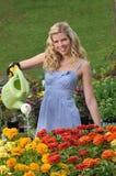 ogrodowi podlewania kobiety potomstwa Fotografia Royalty Free