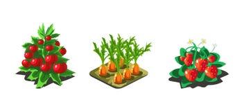 Ogrodowi warzywa i jagody, marchewka, pomidor, truskawka, gemowi interfejs użytkownika natury elementy dla wideo gier komputerowy ilustracji