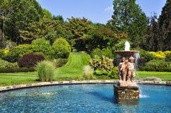 ogrodowy basen Obraz Royalty Free