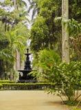 ogrodowy de botaniczny janeiro Rio obraz stock