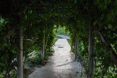 Ogrodowy drzwi Zdjęcie Stock