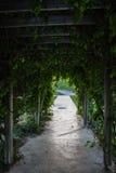 Ogrodowy drzwi Obraz Stock
