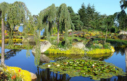 Ogrodowy flor&fjære w Norwegia, Stavanger Obrazy Royalty Free