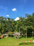 Ogrodowy gazon Pokojowy ogród z Świeżo Koszącym trawa gazonem obrazy stock