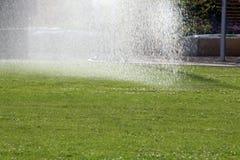 Ogrodowy gazonu podlewanie Fotografia Stock