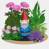 Ogrodowy gnom przy roślinami Zdjęcie Stock