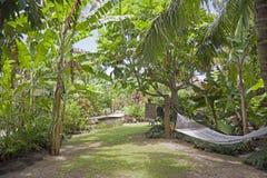 ogrodowy hamak tropikalny Zdjęcia Stock
