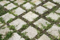 ogrodowy kamień Zdjęcia Royalty Free