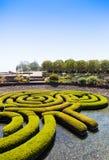 Ogrodowy labirynt Zdjęcie Royalty Free
