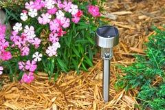 ogrodowy lekki słoneczny Fotografia Stock