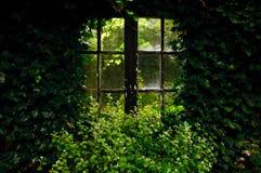 Ogrodowy okno Zdjęcia Royalty Free