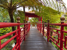 ogrodowy Oriental Zdjęcie Royalty Free