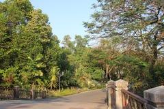 Ogrodowy parkland zdjęcia royalty free