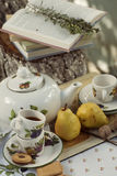 Ogrodowy pinkin, herbata set i książka, Obraz Royalty Free