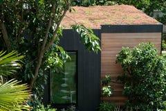 Ogrodowy pokój, zieleń odwrót z pszczołą życzliwą, żywy sedum dach w well zaopatrującym, dorośleć ogród Fotografia Royalty Free