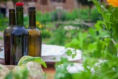 Ogrodowy przyjęcie z winem i zdrowym jedzeniem Zdjęcia Royalty Free