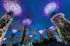 Ogrodowy rapsodu światła przedstawienie przy Super Drzewnym gajem zdjęcie royalty free