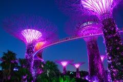 Ogrodowy rapsodu światła przedstawienie przy Super Drzewnym gajem, Singapur zdjęcie stock