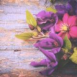 Ogrodowy rocznik Kwitnie Starego drewnianego tło stonowany Zdjęcie Royalty Free