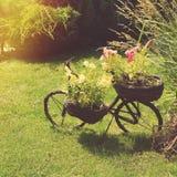 Ogrodowy rower Obraz Royalty Free