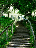 ogrodowy schody Obraz Stock