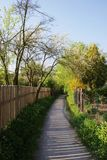 ogrodowy sposób Zdjęcie Royalty Free