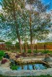 Ogrodowy staw Fotografia Royalty Free