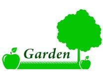 Ogrodowy tło z zielonym jabłkiem royalty ilustracja