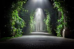 ogrodowy tajemniczy Zdjęcia Royalty Free