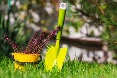 Ogrodowy tool Obraz Stock