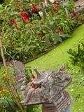 ogrodowy tropikalny Zdjęcie Royalty Free