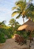 ogrodowy tropikalny Zdjęcie Stock