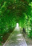 Ogrodowy tunel Obraz Stock