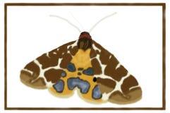 Ogrodowy Tygrysiego ćma Arctia caja - Cyfrowej sztuka ilustracja wektor