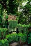 ogrodowy vertical obraz royalty free