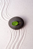 ogrodowy zen