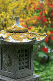 ogrodowy zen Obrazy Royalty Free