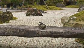 ogrodowy zen obrazy stock