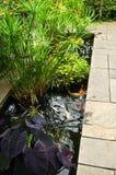 ogrodowy zielony bujny obraz stock