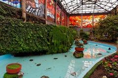 ogrodu botanicznego toluca Meksyk obraz royalty free