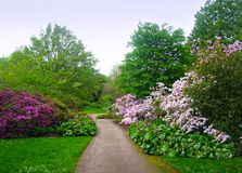 ogrody botaniczne Fotografia Stock