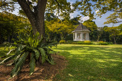 ogrody botaniczne Obrazy Royalty Free