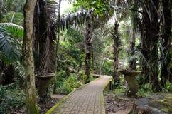 ogrody botaniczne Penang Fotografia Royalty Free
