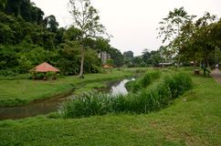 ogrody botaniczne Penang Zdjęcia Royalty Free